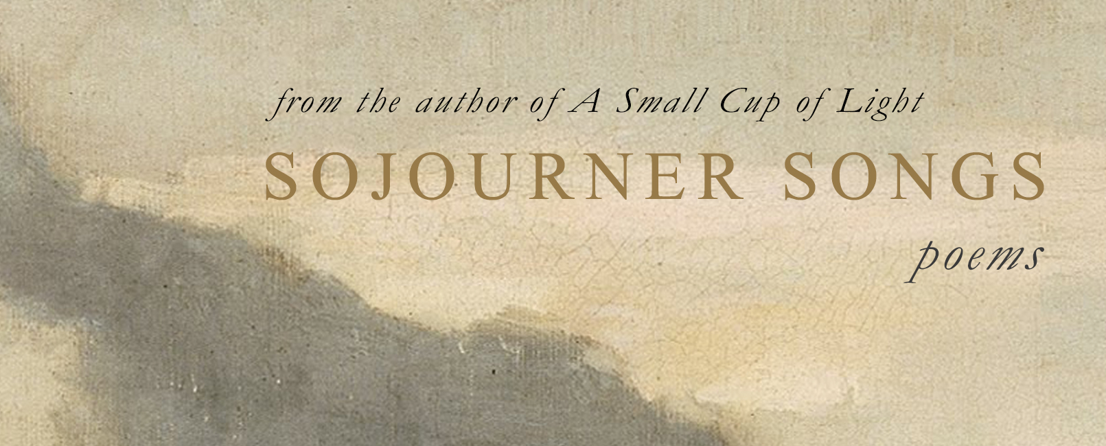 Book Launch Banner